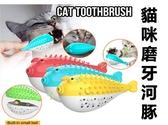 貓咪磨牙河豚 按摩刷 免電池 潔毛磨牙 除垢 紓解 清潔牙齒 除口臭玩具 咬咬球 聰明球 安全無毒