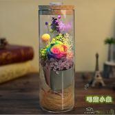 創意愛人520玫瑰花 彩燈玻璃花筒永生花 BS18749『毛菇小象』