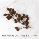 進口乾燥天然帶枝鳳梨松果- 乾燥花束 不...
