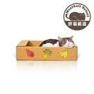 【胖貓嚴選】台灣製 抓板式貓屋 水果盒款 免運費