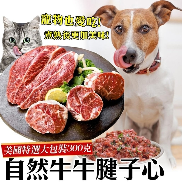 * WANG**鮮食喵*【3包】美國牛腱心牛肉(400g/包)