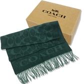 【COACH】大C LOGO 喀什米爾羊毛混蠶絲流蘇圍巾(莫蘭迪綠)