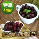 【幸美生技】4公斤鮮凍花青雙黑莓果免運特惠組(黑醋栗2公斤+黑莓2公斤)