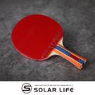 蝴蝶牌 BUTTERFLY 桌球拍負手板乒乓球RDJ刀板S3 幻象-3.