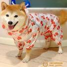 狗狗雨衣中小型犬可愛四腳衣服防水全包寵物泰迪柯基法斗柴犬雨披【小獅子】