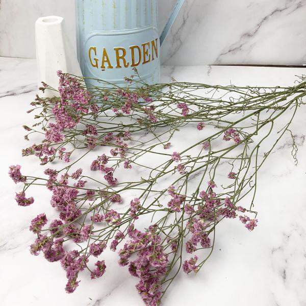 進口乾燥天然水晶草-乾燥花圈 乾燥花束 拍照道具 手作素材 室內擺飾 乾燥花材 鄉村風-48元/束