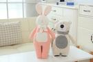 【2款】圍巾熊 長耳兔 娃娃 玩偶 抱枕 聖誕節交換禮物 生日禮物 兒童節