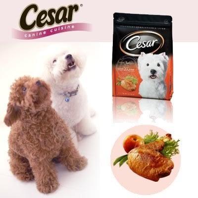 【zoo寵物商城】Cesar西莎乾糧飼料系列1kg(另有5包賣場)