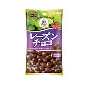正榮果實Veil葡萄乾巧克力47g【愛買】