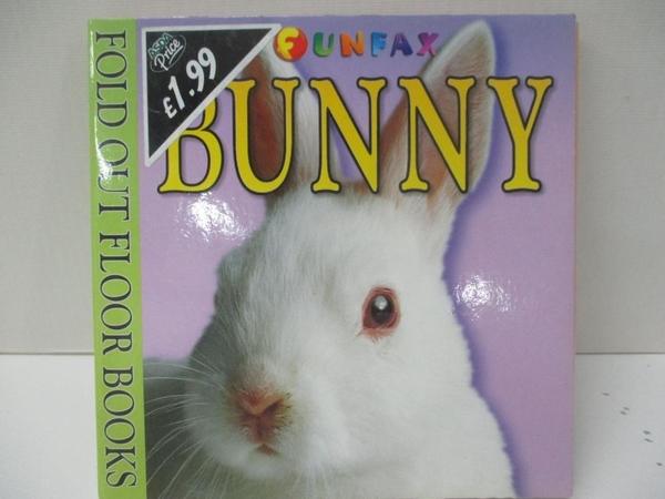 【書寶二手書T2/少年童書_DQX】Floor Book - Bunny
