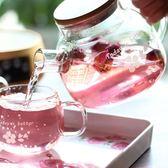 茶壺vankine茶壺耐熱玻璃茶具耐高溫泡茶壺花茶壺過濾家用燒水壺套裝 免運直出 交換禮物