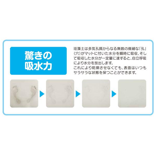 【HIRO】M號 珪藻土地墊 保證日本製原裝進口(限宅配)