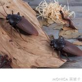 遙控蟑螂模擬玩具老鼠電動模型小強動物新奇禮物男孩嚇人整蠱玩具 快速出貨