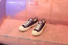 ISNEAKERS EXCELSIOR 餅乾鞋 白 紫 帆布鞋 DF_M6017CV_PP 女鞋 韓國限定
