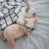 法鬥睡覺伴侶四腳豬豬寵物毛絨玩具xx1823 【VIKI菈菈】