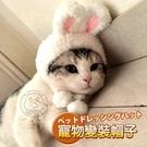 【培菓平價寵物網】DYY》卡哇伊變裝兔帽