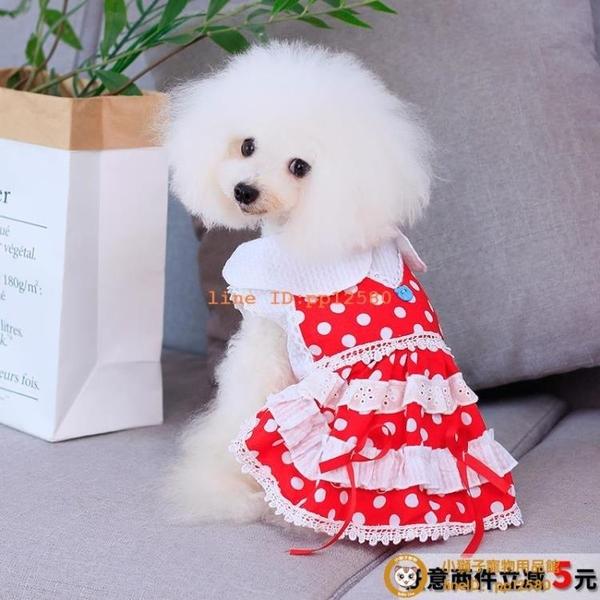 夏季衣服寵物狗狗服裝泰迪比熊中薄款透氣夏天裝連衣公主裙小型犬小狗狗【小獅子】