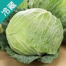 【台灣】脆甜高麗菜1粒(1.2kg±5%/粒)【愛買冷藏】