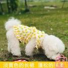 狗狗衣服春夏寵物裙子泰迪貓咪寵物小型犬博美比熊夏季薄款【匯美優品】