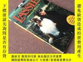 二手書博民逛書店Lassie罕見(英語)Y278316 Sheila Black