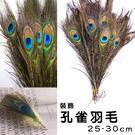 羽毛 孔雀毛 孔雀羽毛 (25-30cm...