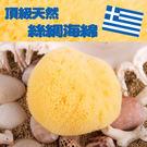 希臘進口天然海綿-絲綢海綿3.5吋 (肌...