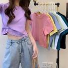 純棉短袖 夏季新款修身純棉短袖T恤女潮基礎款韓版百搭學生小眾簡約上衣
