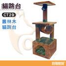 寵愛貓跳台-叢林木貓跳台CT29-35*35*99CM【寶羅寵品】