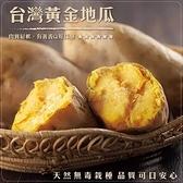【果之蔬-全省免運】台農57號黃地瓜(10台斤±10%/平裝箱)