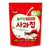 韓國 NAEBRO 蘋果冷凍乾燥水果乾12g(7個月以上適用)(韓國進口)