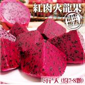 【家購網嚴選】屏東紅肉火龍果 5斤/盒 大(約7-8顆)