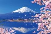 拼圖300片成人減壓益智富士山櫻花湖畔玩具創意【古怪舍】