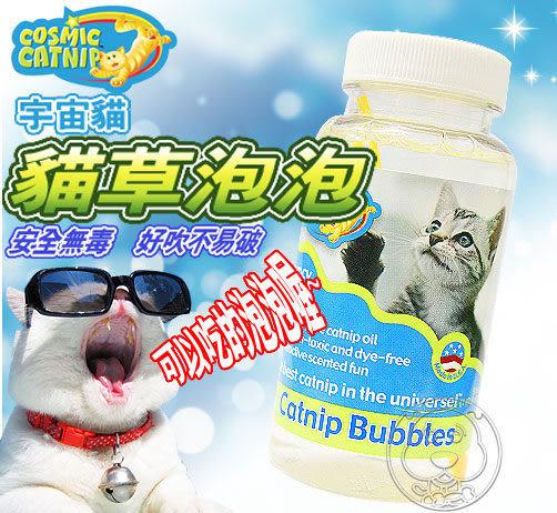【 培菓平價寵物網 】《宇宙貓》貓草油泡泡瓶5oz(147.9ml)可以邊追邊吃的唷