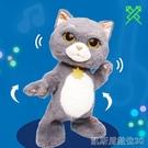 兒童玩具斑布貓跳舞玩具兒童電動說話唱歌躲貓貓抖喵學舌公仔生日禮 凱斯盾