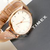 TIMEX 天美時 冷光照明 超質感 完美時尚腕錶 米蘭錶帶 女錶 玫瑰金 夜光 TW2R26400
