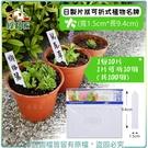 【綠藝家】日製片狀可折式植物名牌(大-寬...