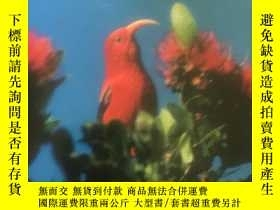 二手書博民逛書店HAWAII罕見THE ISLANDS OF LIFE17659