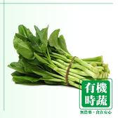 【有機認證生鮮時蔬】芥藍菜 ( 250g ∕ 包 )