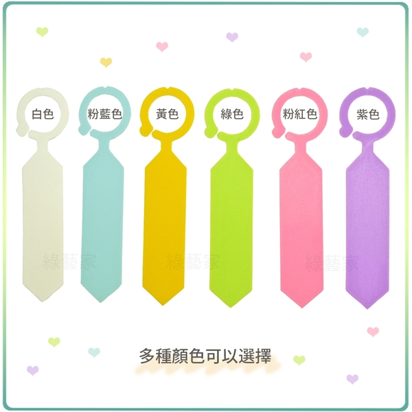 【綠藝家】馬卡龍吊牌 40支/組 (共6色可選) 掛牌.植物名牌.花牌.樹牌