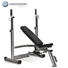 JOHNSON喬山 - HORIZON Adonis Plus 多功能舉重訓練床|多功能設計機種!更超值