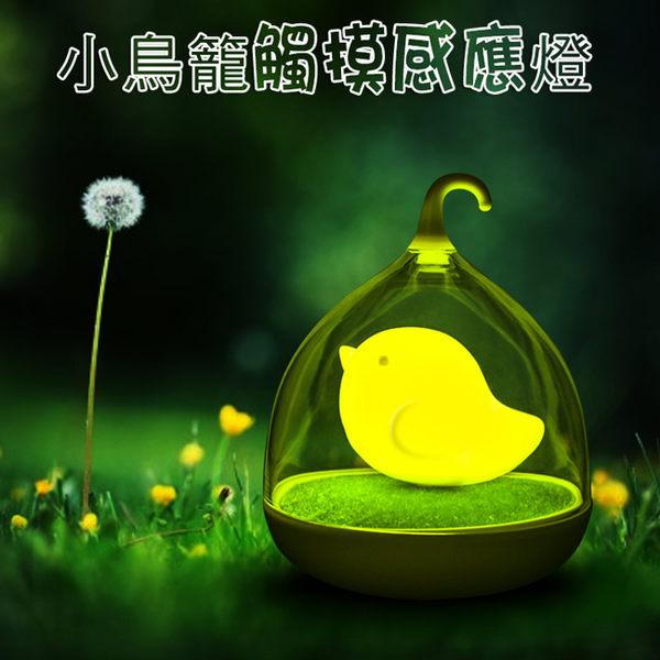 小鳥籠創意 LED小夜燈 觸摸感應 調光夜燈 氣氛燈 可充電 臥室隨手燈 拍拍嬰兒餵奶 睡眠臺燈 禮物
