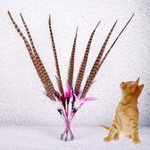逗貓棒羽毛鈴鐺貓貓玩具寵物貓咪用品LJ2413『miss洛羽』