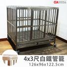 白鐵 寵物籠 4x3尺 304不銹鋼 雙門圓管籠 外銷日本籠狗屋 大型犬籠子 空間特工CSB0403