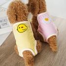 狗狗生理褲泰迪比熊寵物用品月經安全褲透氣紙尿褲狗狗用品尿不濕快速出貨