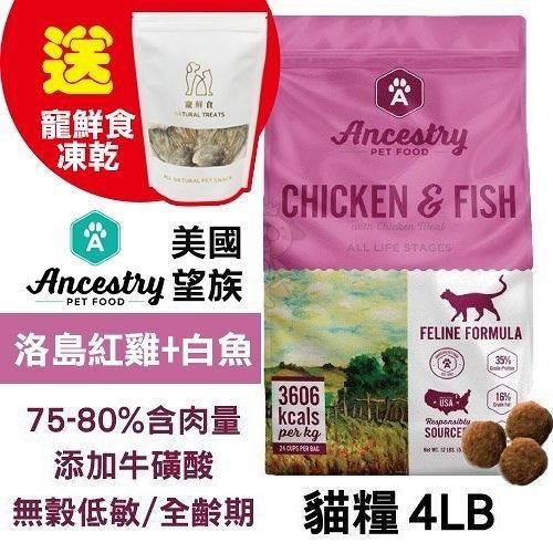 48H出貨送寵鮮食凍乾X1 Ancestry 美國望族 天然貓糧(無穀系列) 洛島紅雞+白魚 4LB/包