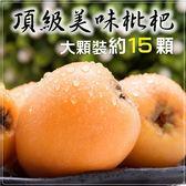 【果之蔬-全省免運】台灣頂級大顆枇杷原裝禮盒X2盒(15顆/盒 每盒約500g±10%含盒重)