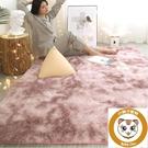 毛毯地墊墊子地毯客廳茶幾臥室可愛床邊家用【小獅子】