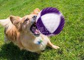 寵物玩具球 狗狗耐咬小狗金毛幼犬法斗柯基大狗寵物訓練咬膠大型犬彈力球 俏女孩