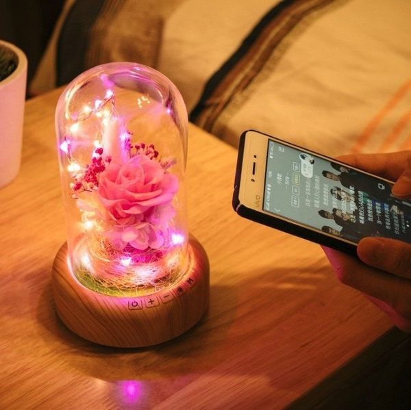 【Love Shop】許願流光瓶小夜燈 藍牙音響LED氛圍燈 微景觀永生花聖誕禮物/生日禮物/交換禮物