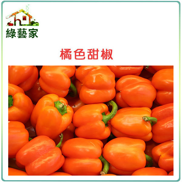 【綠藝家】G76.橘色甜椒種子3顆